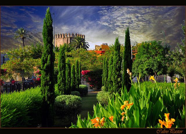 Andalucia.jpg